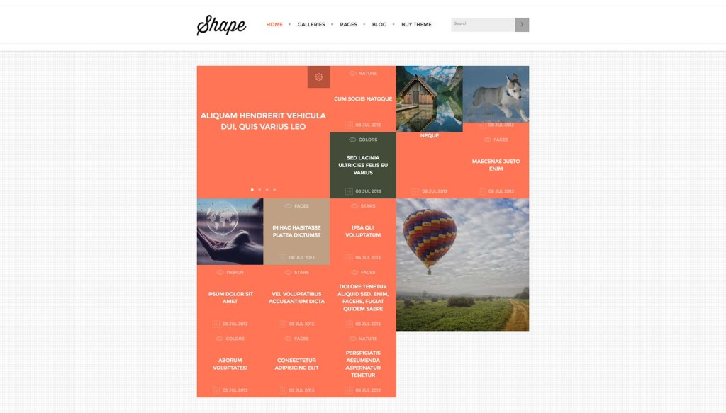 Deal of the week: 14 Gorgeous WordPress themes