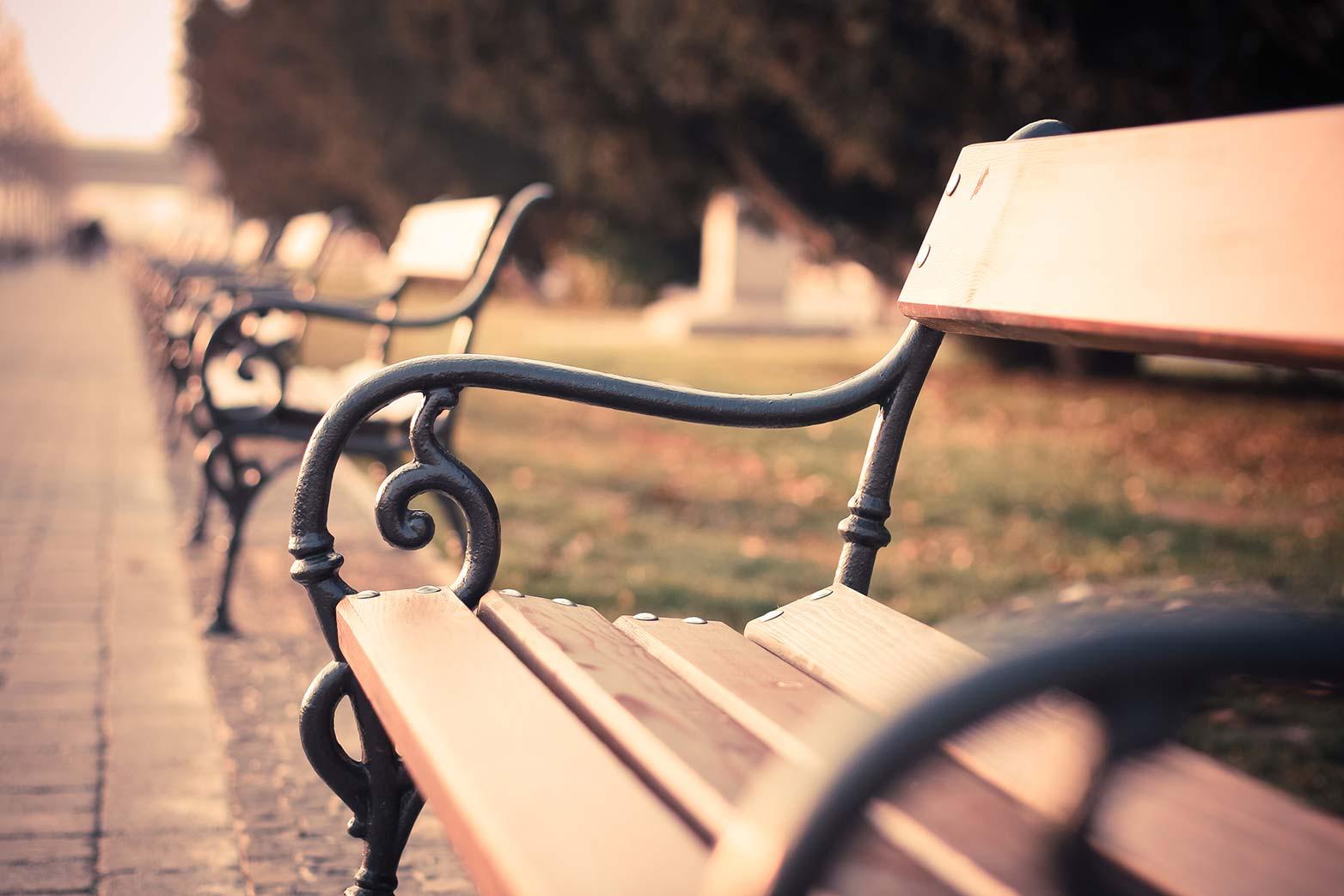 picjumbo.com_IMG_1275