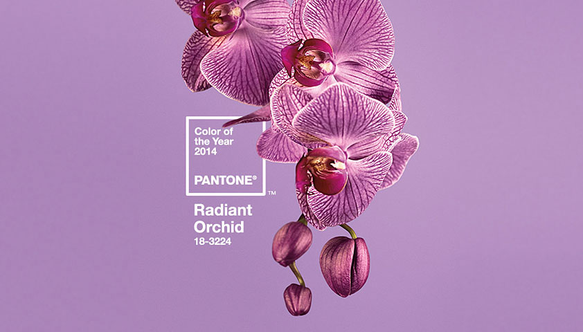 Pantone unveils 2014 color of the year