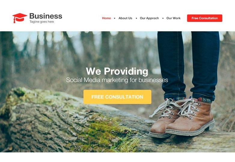 agency-business-website-template-psd-css-author