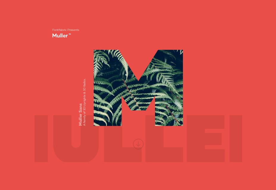 Muller Font