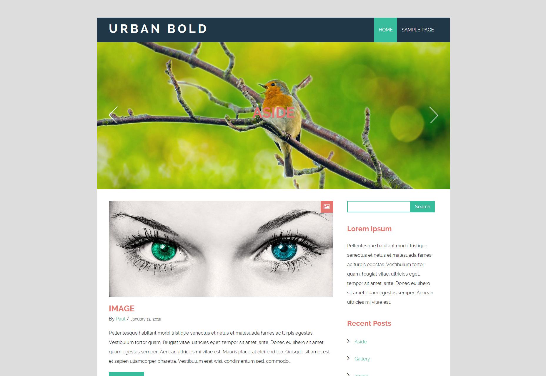 Urban Bold: Refreshing Blogging WordPress Theme