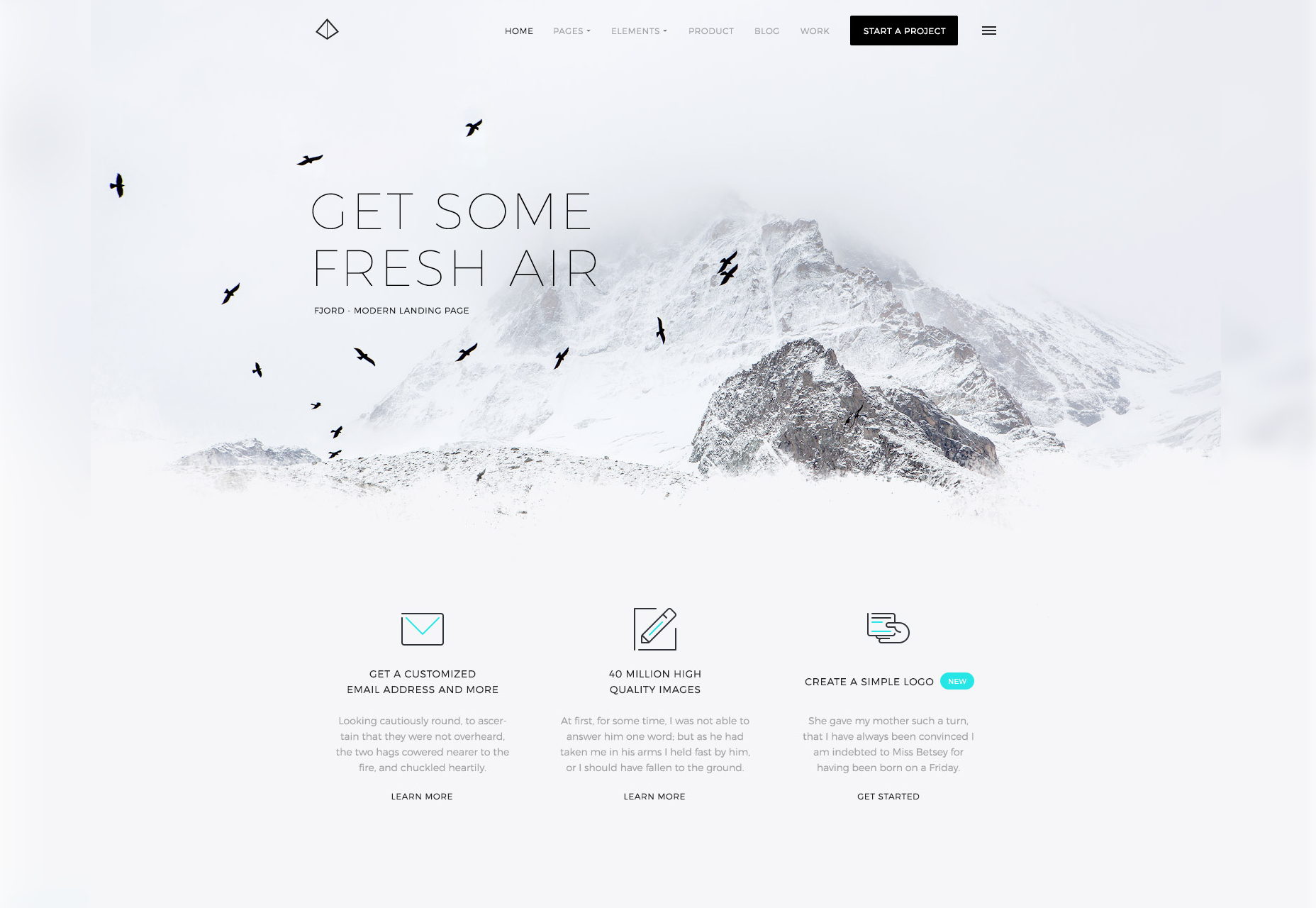 Fjord: A Clean & Cold Schemed Landing Page Theme