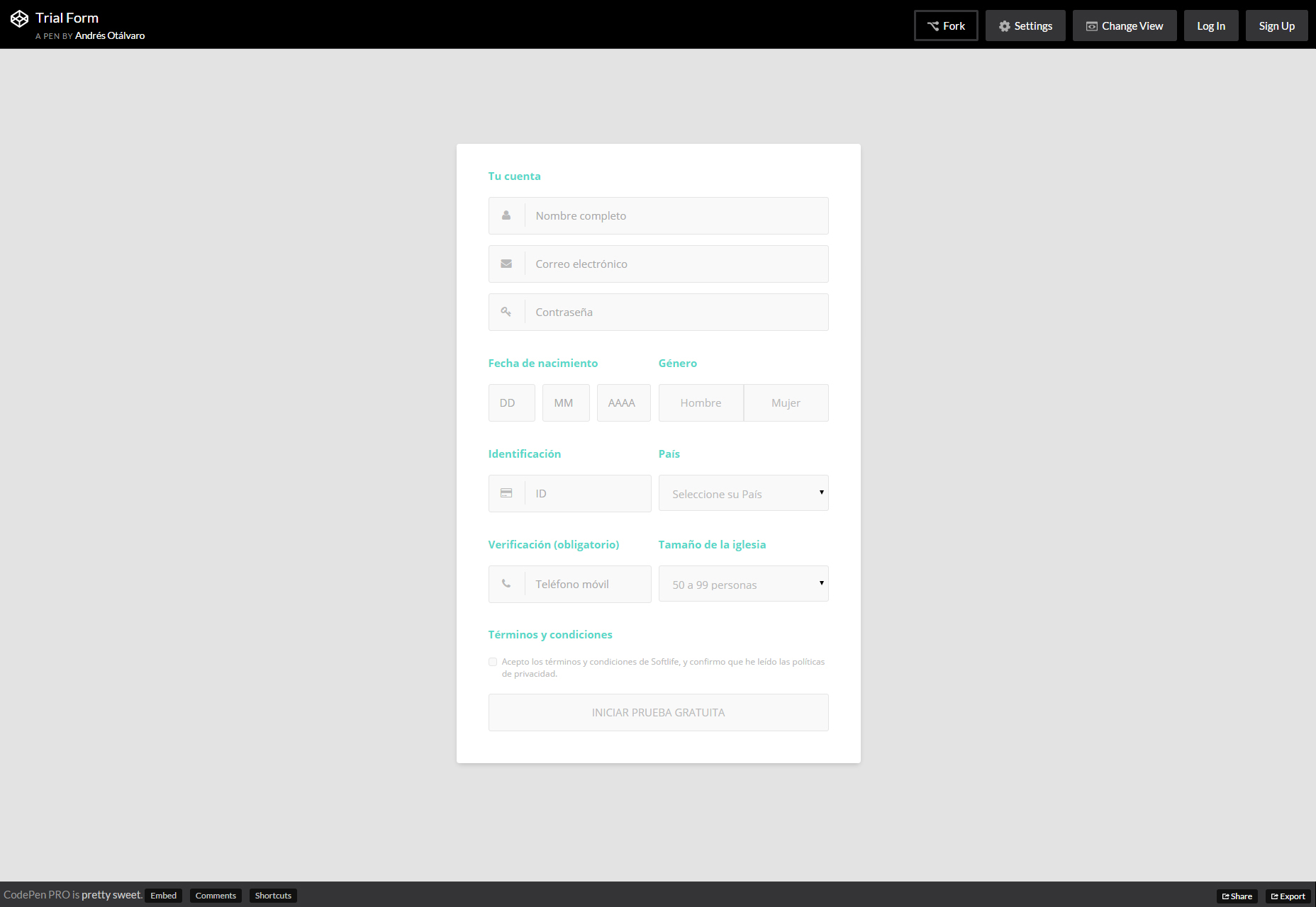 Trial Form: Nice CSS Form Template