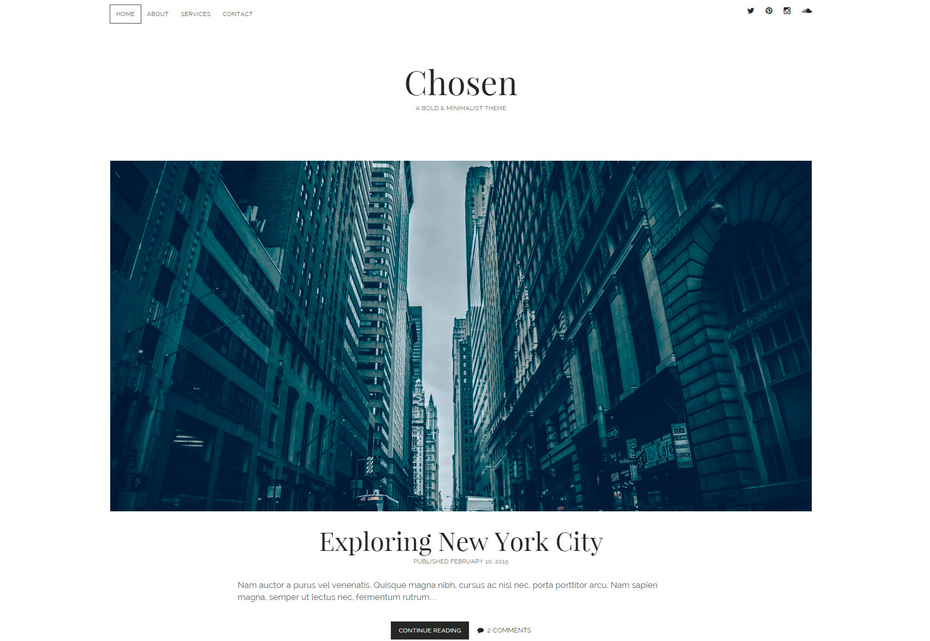 Chosen: Minimal Blogging WordPress Theme