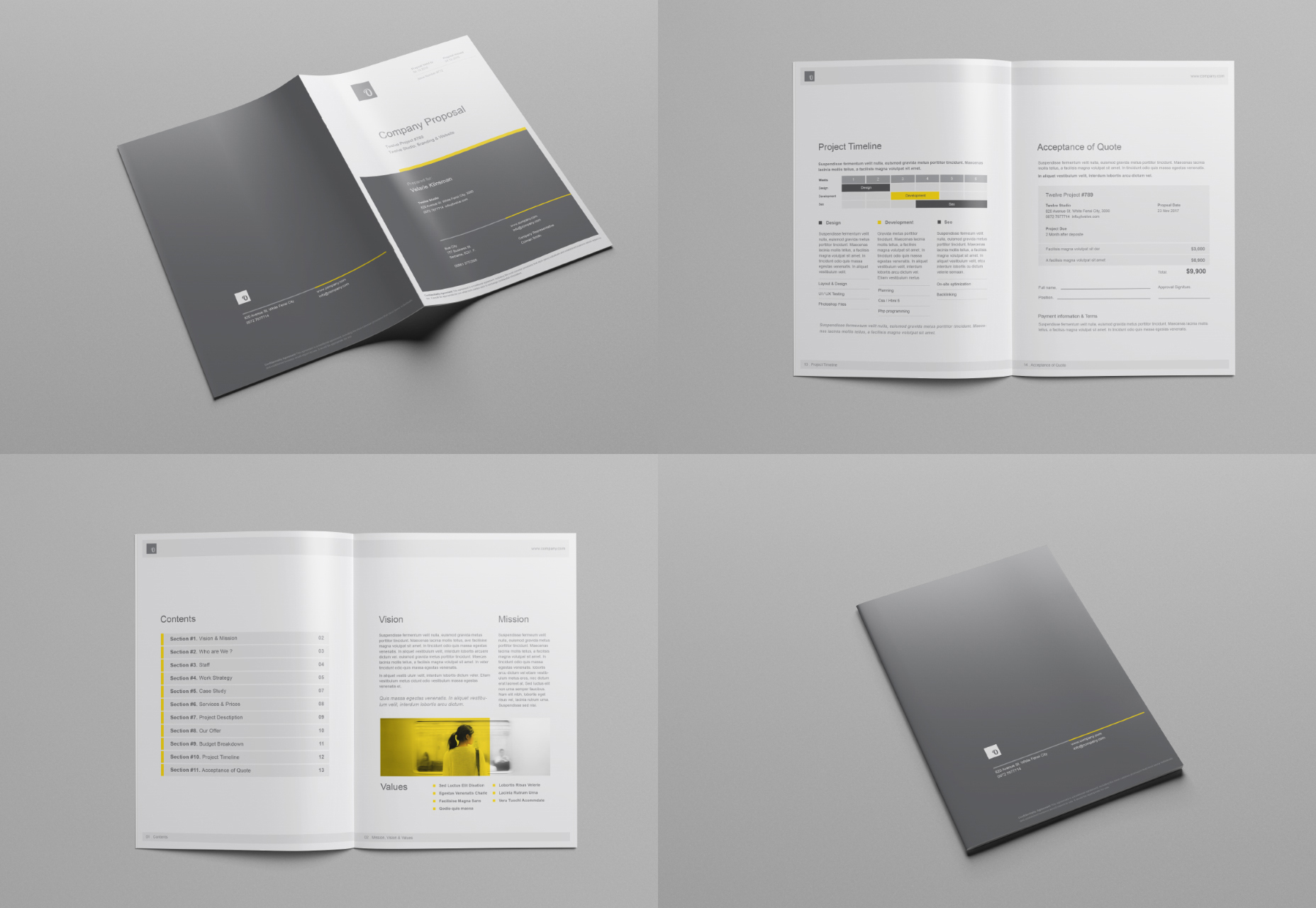 Company Proposal Brochure Mockups Set