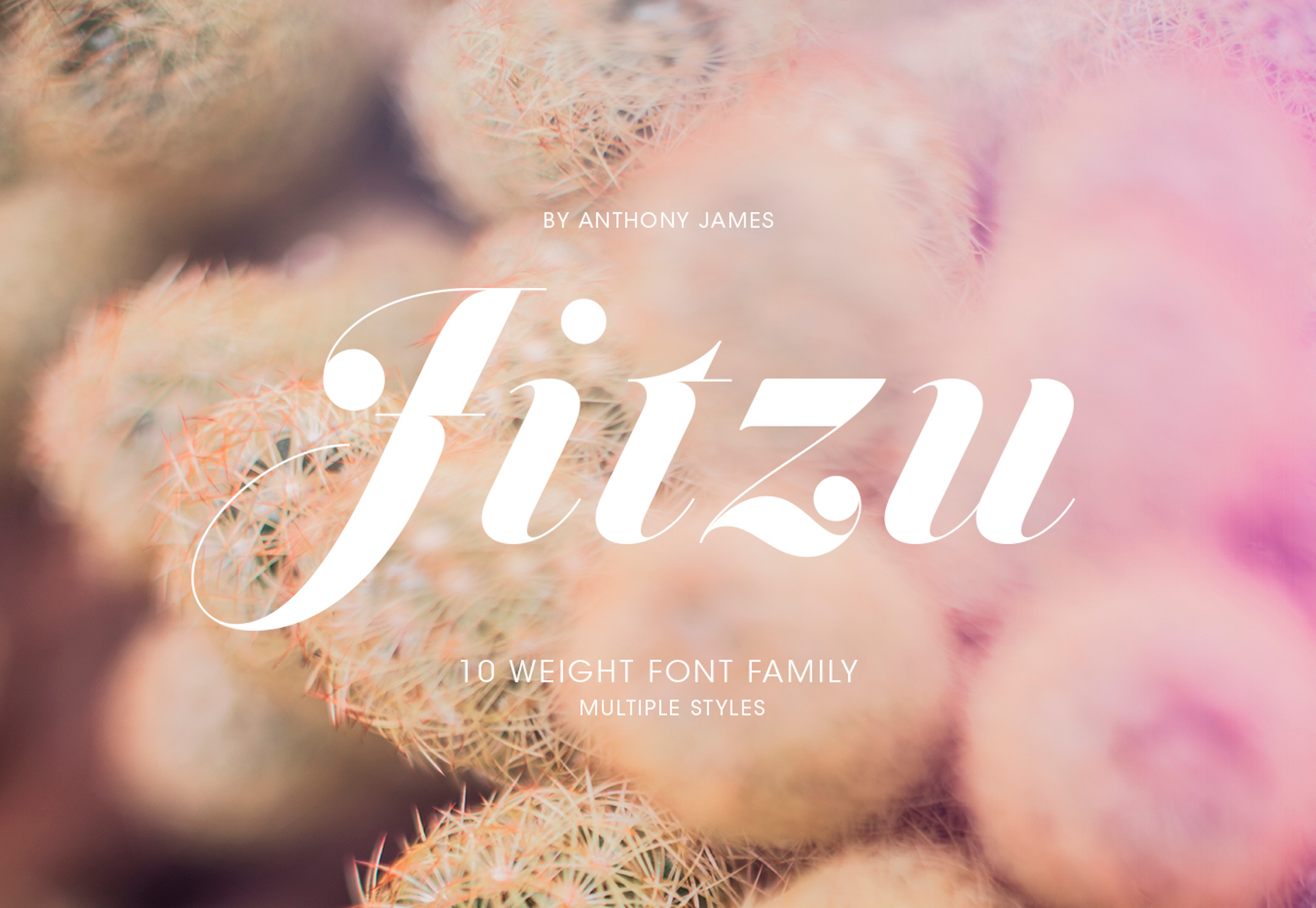 Jitzu: Fancy 10-weight Didone Typeface