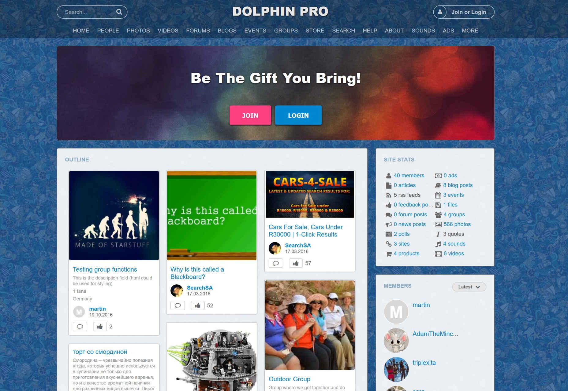 08-dolphinpro