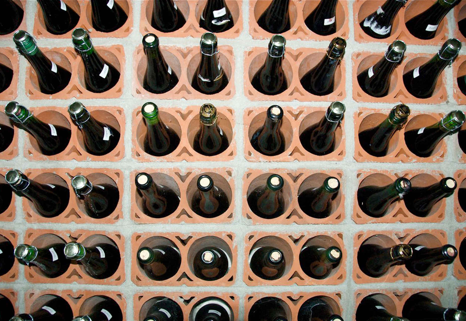 bottle-grid