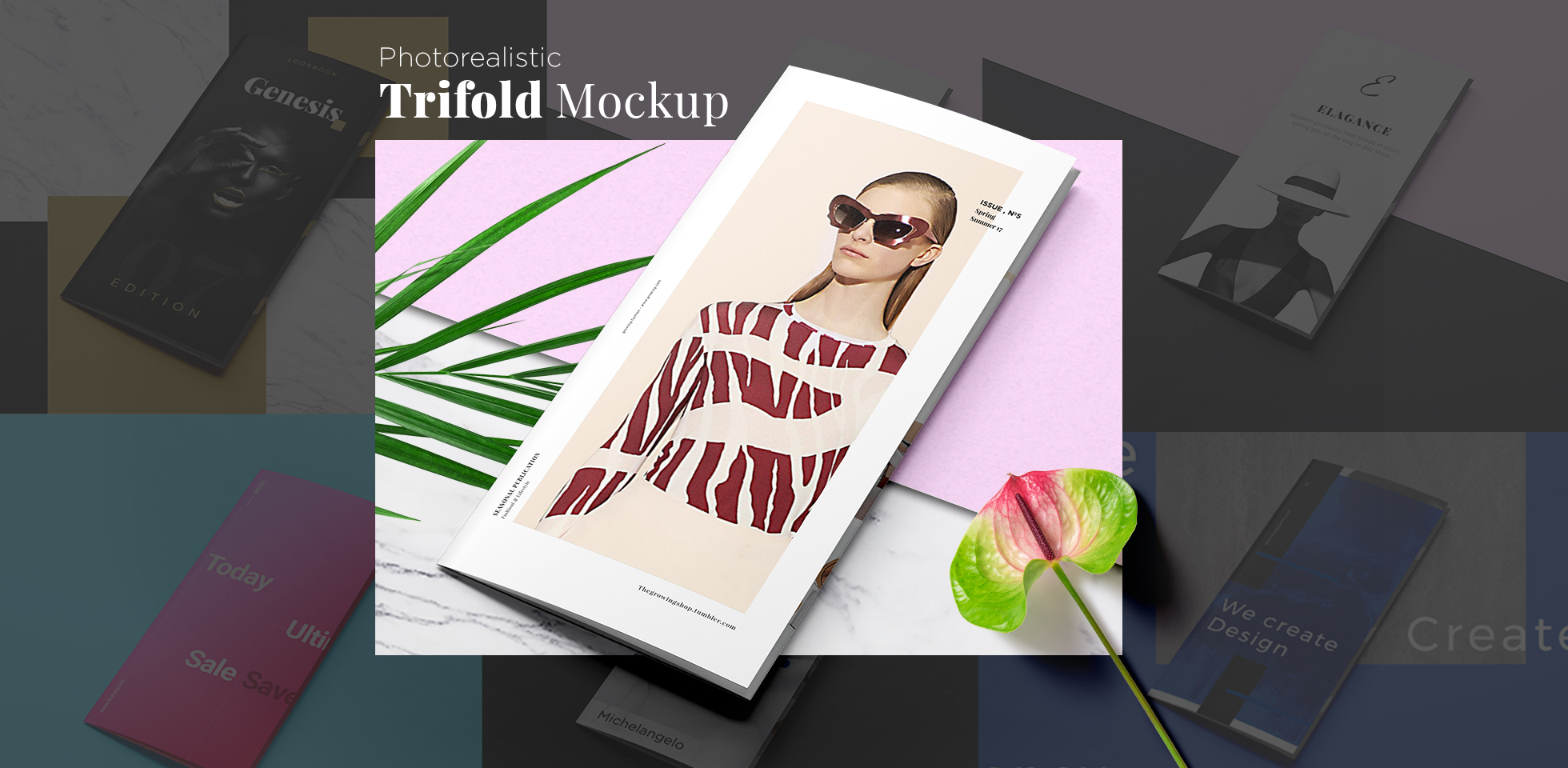 Free Download: Fashion Trifold Mockup