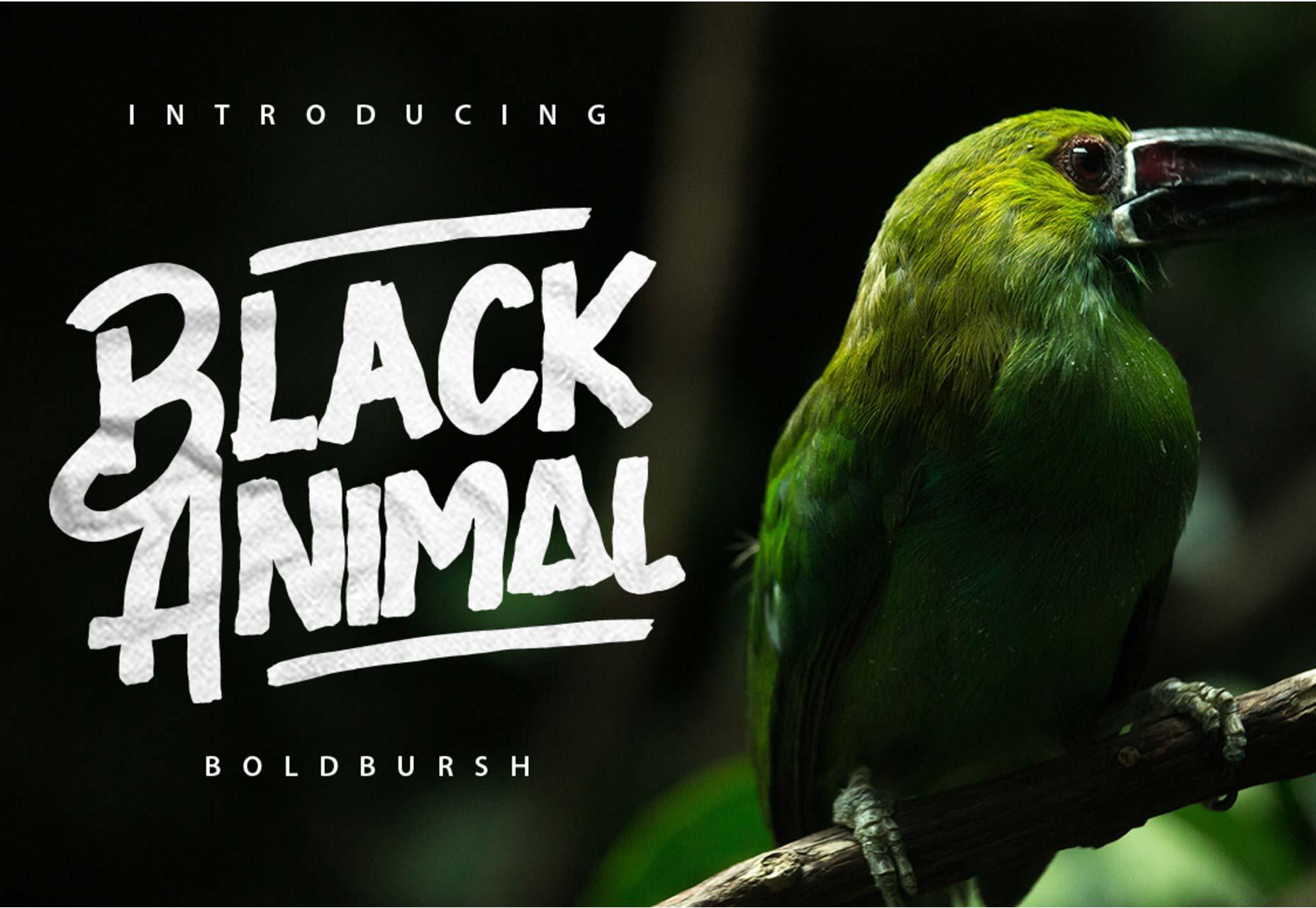blackanimal