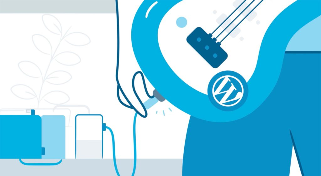 WordPress.com Gets Custom Plugins and Themes