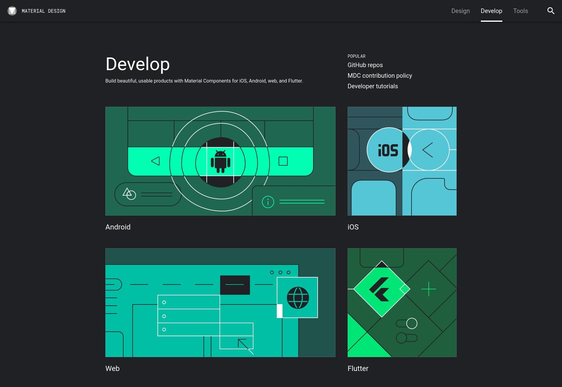 02-develop