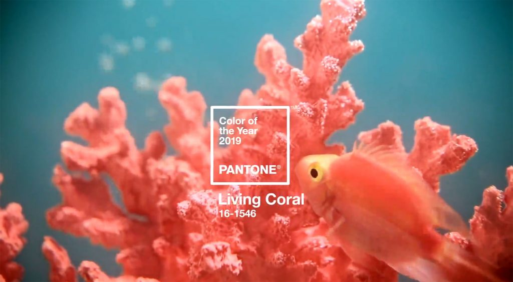 Pantone Announces Color of the Year: Living Coral