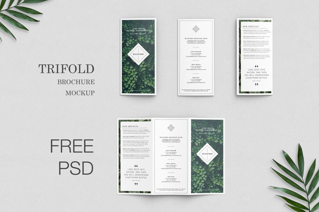 Free Download: Trifold Brochure Mockup