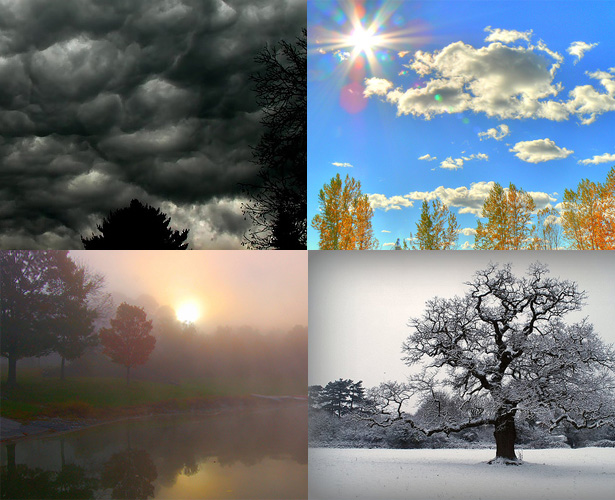 Nature's Moods