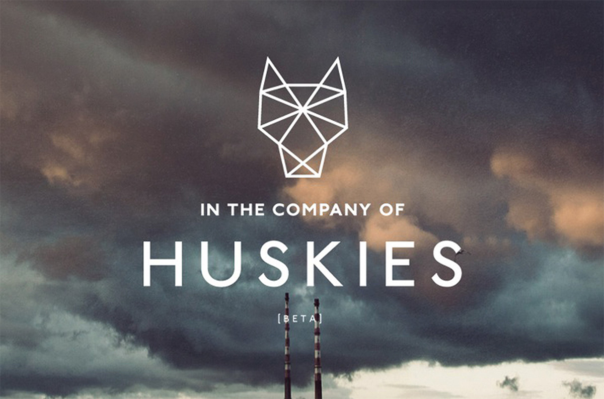 company of huskies