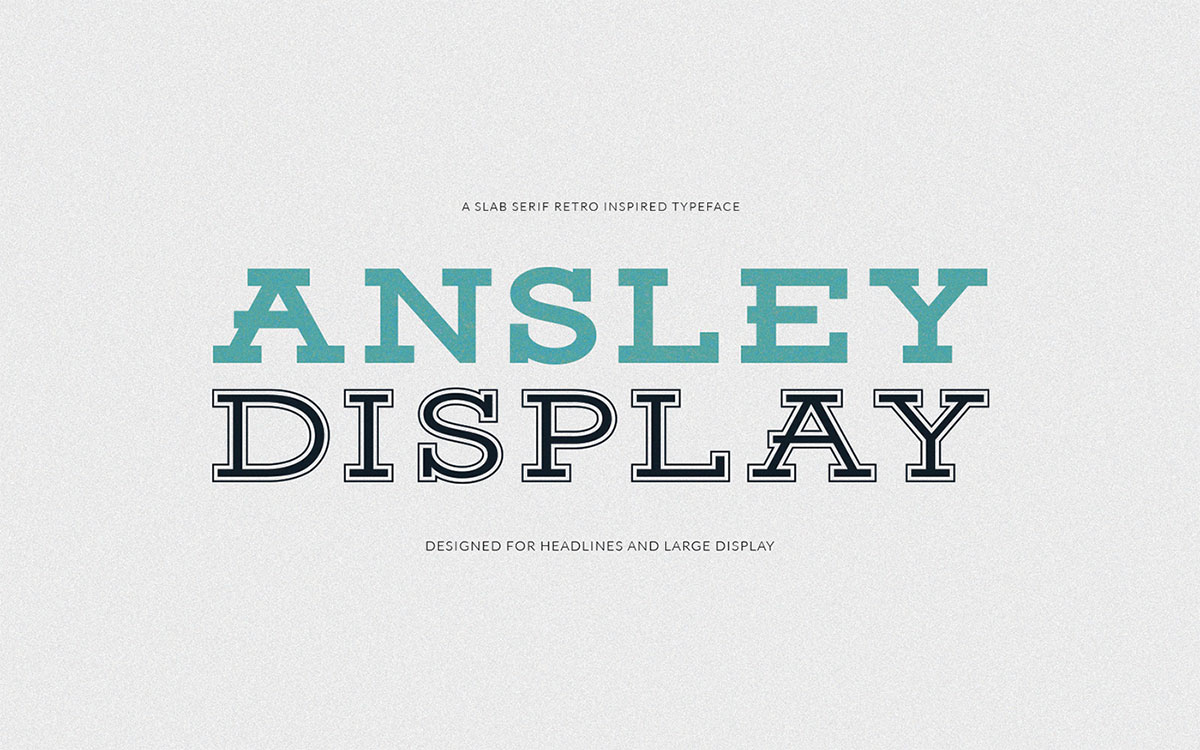 Ansley Display